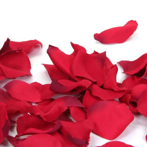 Rosenblätter / Blütenblätter (100 Stück) - rot