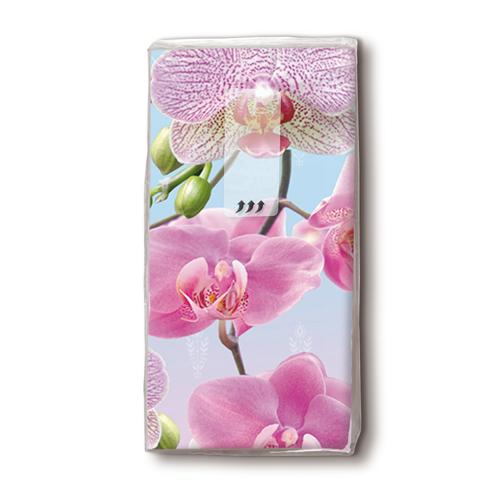 Taschentücher 'Bright Orchide' 10 Stück
